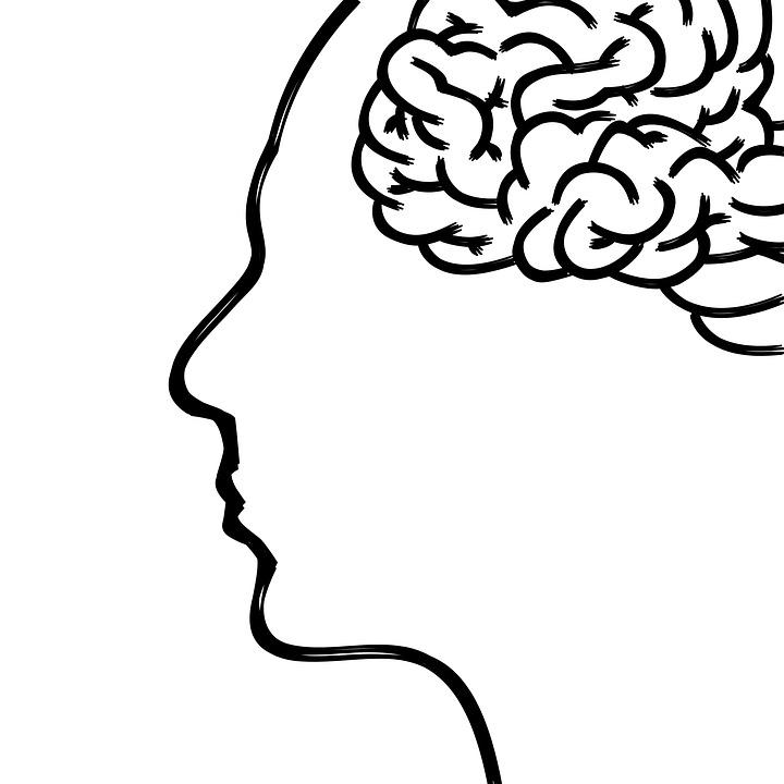 ジョギングの脳への効果
