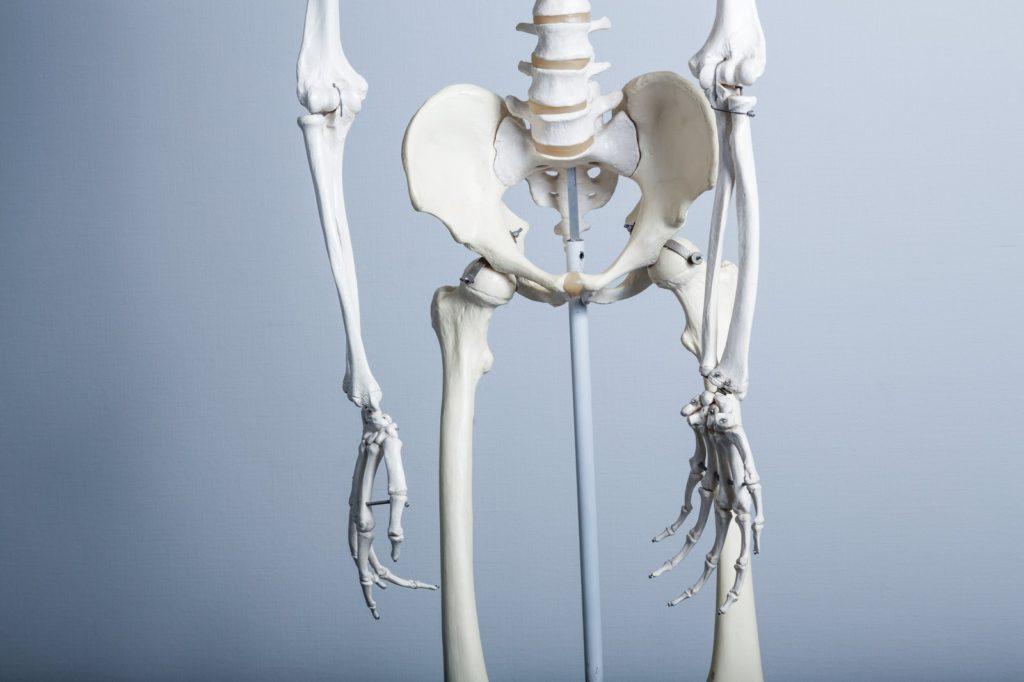 股関節、骨盤の歪み