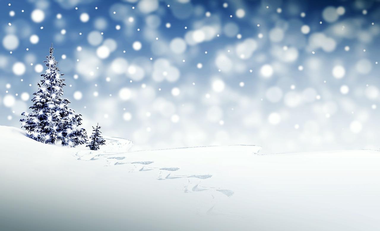クリスマス、正月で太るのを防げ!!