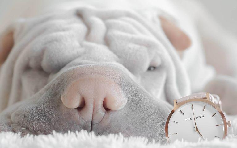 気持ち良い睡眠を得るために